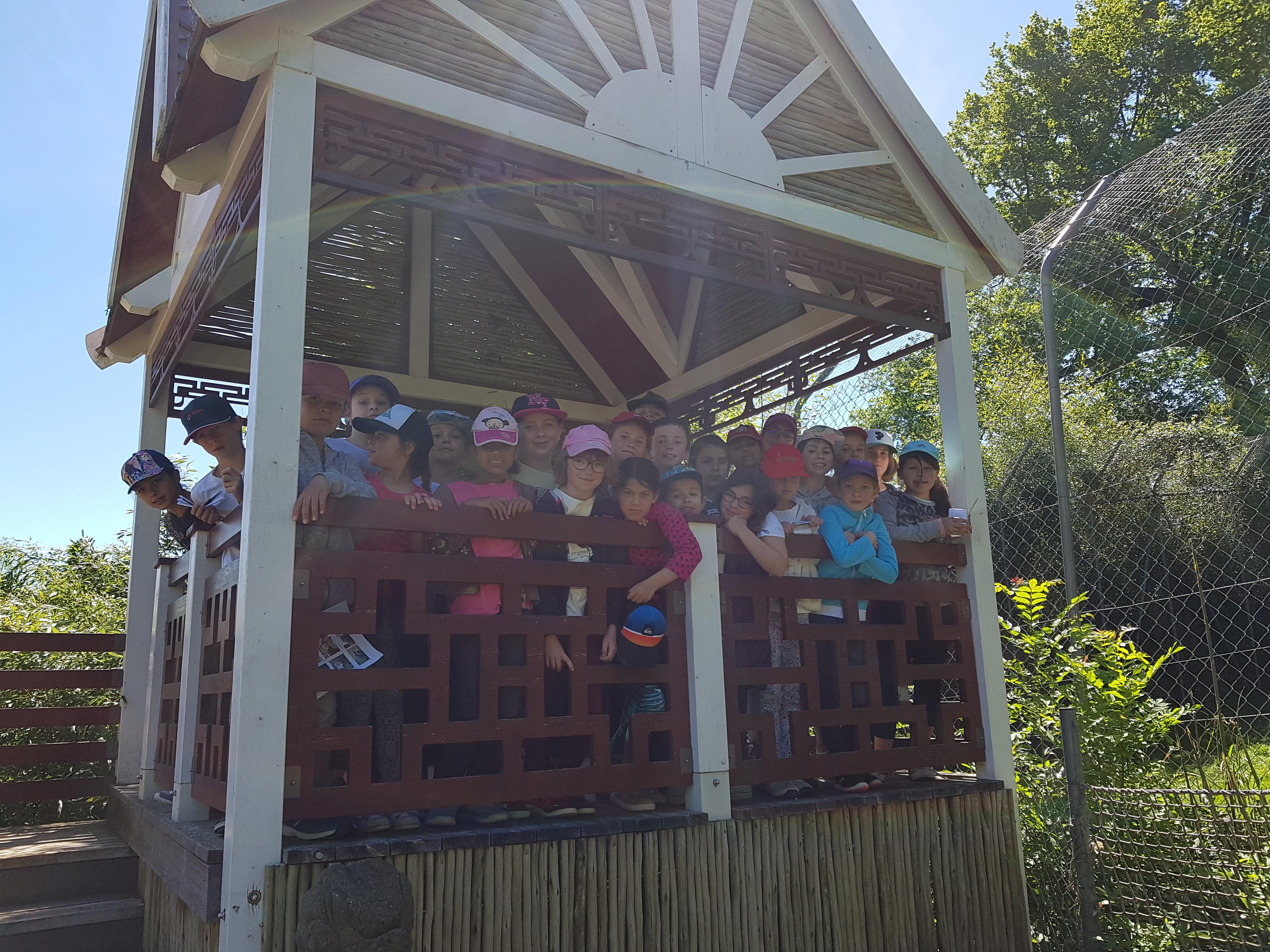 Visite au zoo d'Asson
